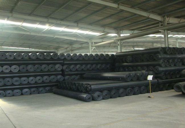 双向塑料土工格栅-TGSG聚丙烯PP塑料格栅-生产厂家批发11.jpg